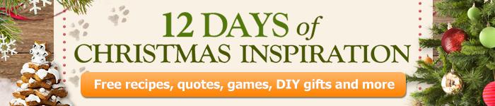 12 Days of Christmas Marketing Banner