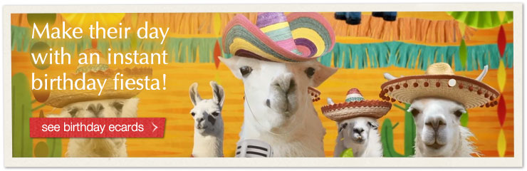 Make their day with an instant birthday fiesta! See birthday ecards