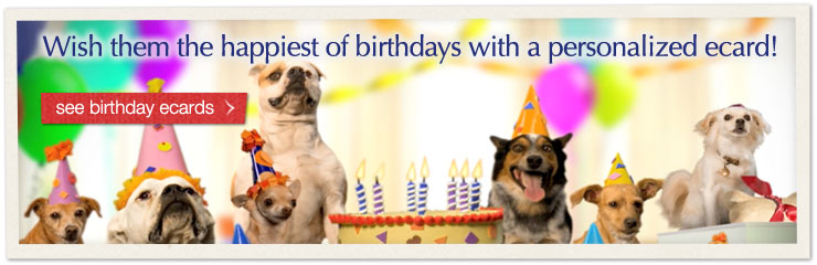 Wish them the happiest of birthdays with a personalized ecard! see birthday ecards