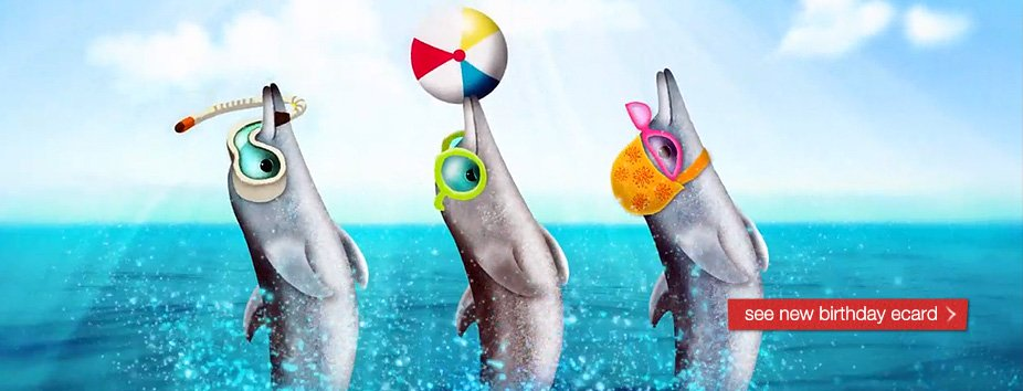 Dolphin Homepage Banner