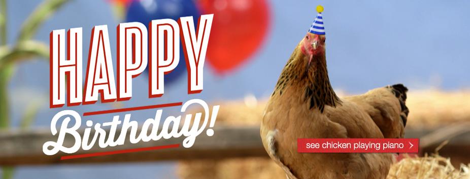 Homepage Banner Chicken