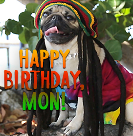 Doug Wearing Reggae Hat, send the reggae birthday ecard