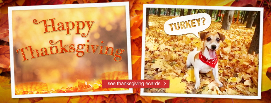 Thanksgiving Homepage Banner