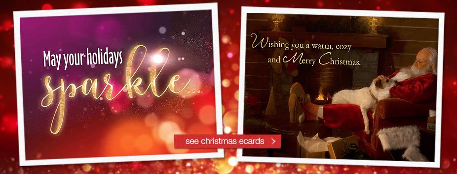 Christmas Homepage Banner