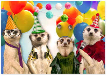 Four meerkats wearing party hats - View birthday ecards