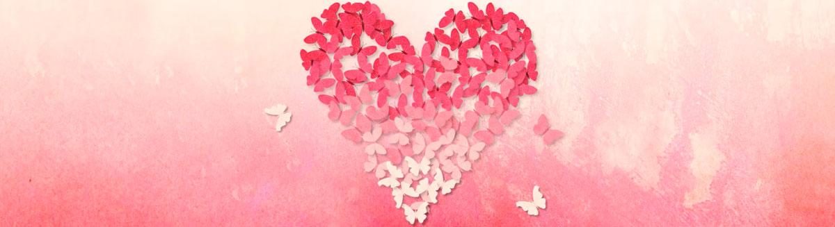 Pink ombre heart made of butterflies
