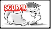 Scorpio 10/23-11/21