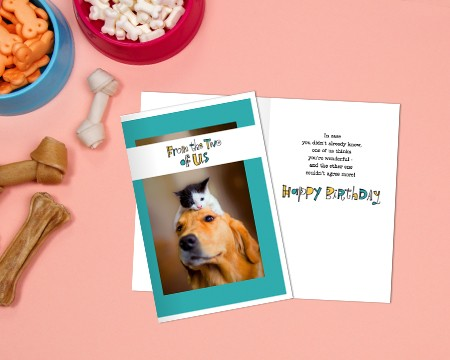 Printable Cards From Pets