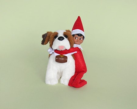 The Elf on the Shelf and Dog