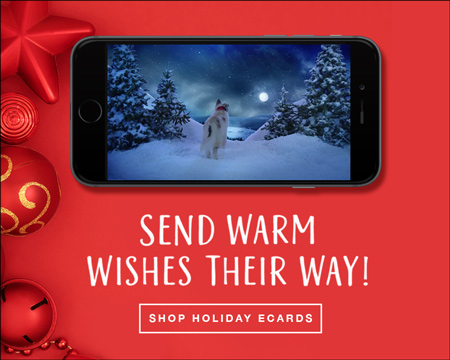send christmas ecards three pets ecard on mobile