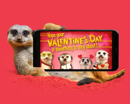 valentines day ecards - Media Banner