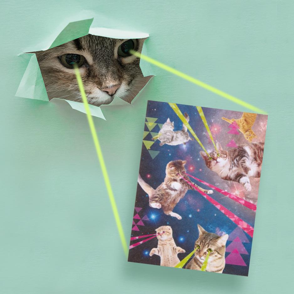 Laser Eye Cat Just Wink Card