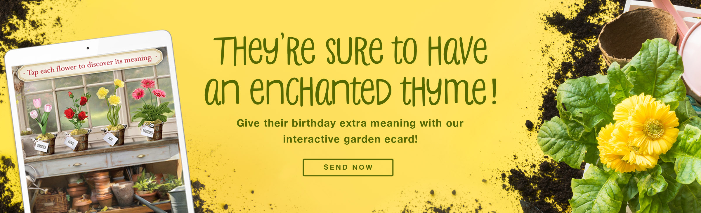 Birthday Garden Ecard - Send Now