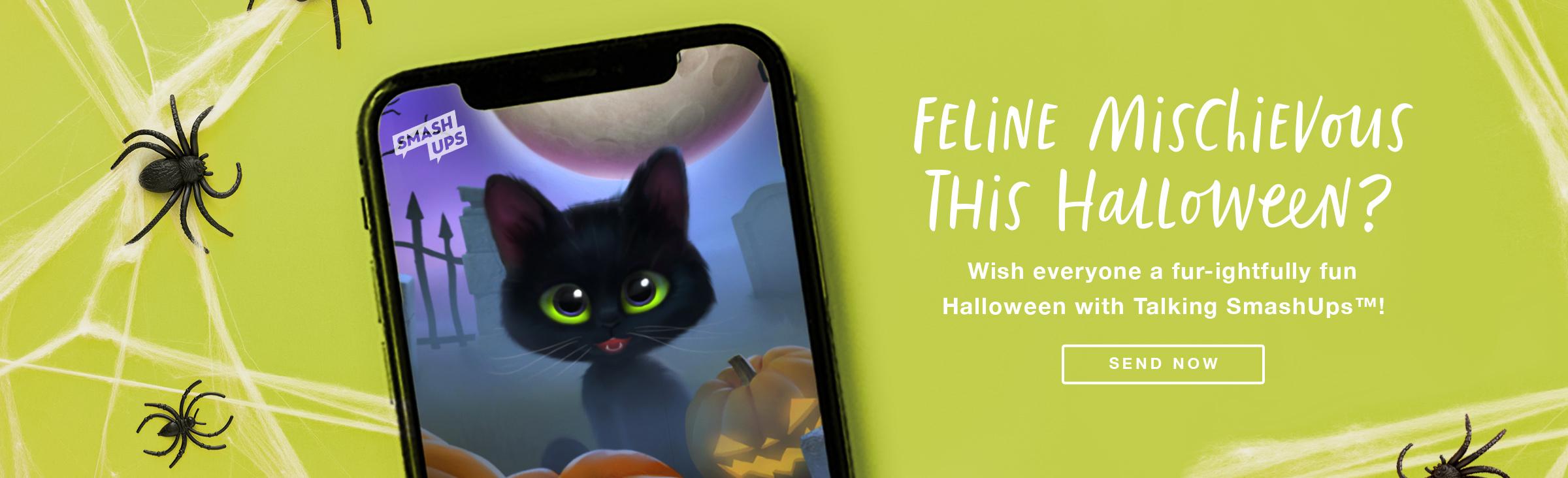 Talking Cat SmashUp Banner