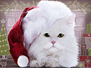 Santa Paws Talking Card Christmas eCards