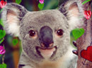 Top Koala-ty Hugger Talking Card Valentine's Day eCards