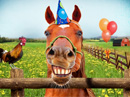 Pasture Prime Talking Card Birthday eCards
