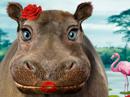 Kissopotamus Talking Card Valentine's Day eCards