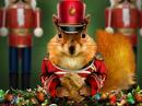 The Nutcracker Talking Card Christmas eCards