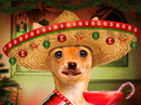 Feliz Navidog! Talking Card Christmas eCards