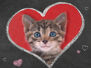 Purrfect Valentine Talking Card Valentine's Day eCards
