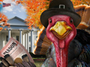 Let's Talk Turkey Talking Card Thanksgiving eCards