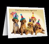 Doggone Special
