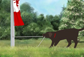 Raise the Flag (Canada)