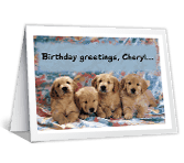 From the Whole Pack greeting card