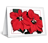 Warm Wishes Christmas Printable Cards
