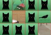Cat Pelmanism