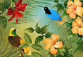 Birds of Paradise e-card