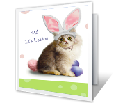 Purrfect Easter Easter Printable Cards