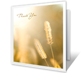Thanks for Expression of Sympathy Thank You Printable Cards