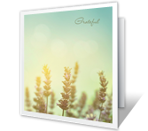 With Appreciation Thank You Printable Cards