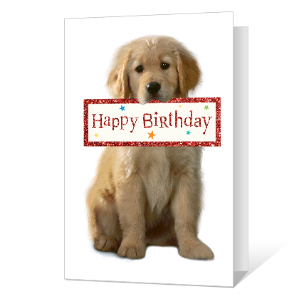 For Someone Nice Birthday Cards