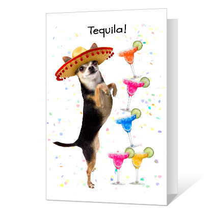 Tequila Birthday Birthday Cards