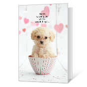 Paws to Celebrate greeting card