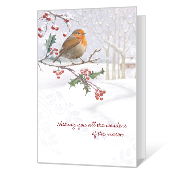Wonders of the Season Season's Greetings Cards