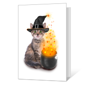 Halloween Fun Halloween Cards
