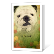 Just Checking In greeting card