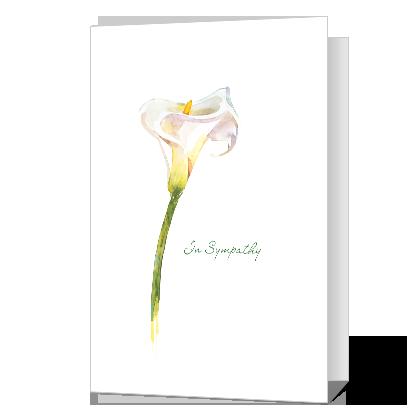 Heartfelt Sympathy Sympathy Cards