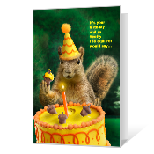 A Nutty Birthday Birthday Cards