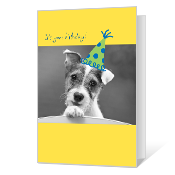 Tail-wagging Birthday Birthday Cards