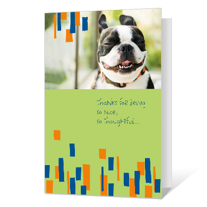Doggone Great Thank You Cards