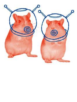 Hamster-gram life, etc. card