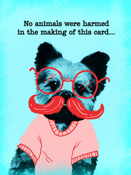 undignified puppy birthday card