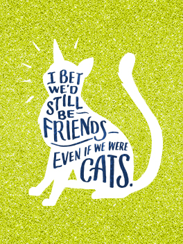 litter box friends rule card