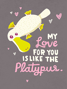 love like the platypus valentine's day card