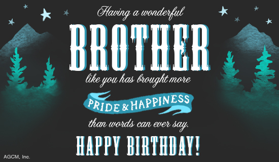 Happy Birthday Brother Ecard Postcard